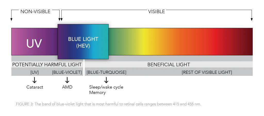 Blue Light (HEV) Chart Showing the Harm of Blue-Violet Light